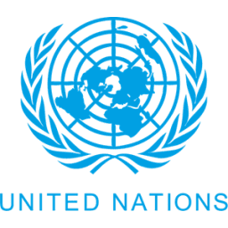 brandwiser career coaching client united nations